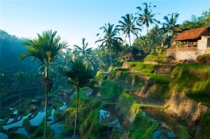 FeaturePics-Bali-Scenery-103929-2463034