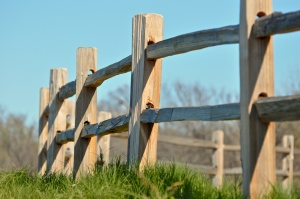 Split rail fence in the country