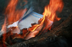 Fire destroying leaves of a paper thrown in a fire